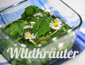 wildkrauter_whatfoodcan
