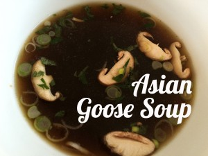 Asian goose soup