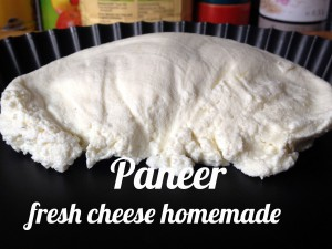 Paneer fresh cheese homemade